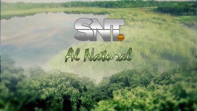 SNT al Natural